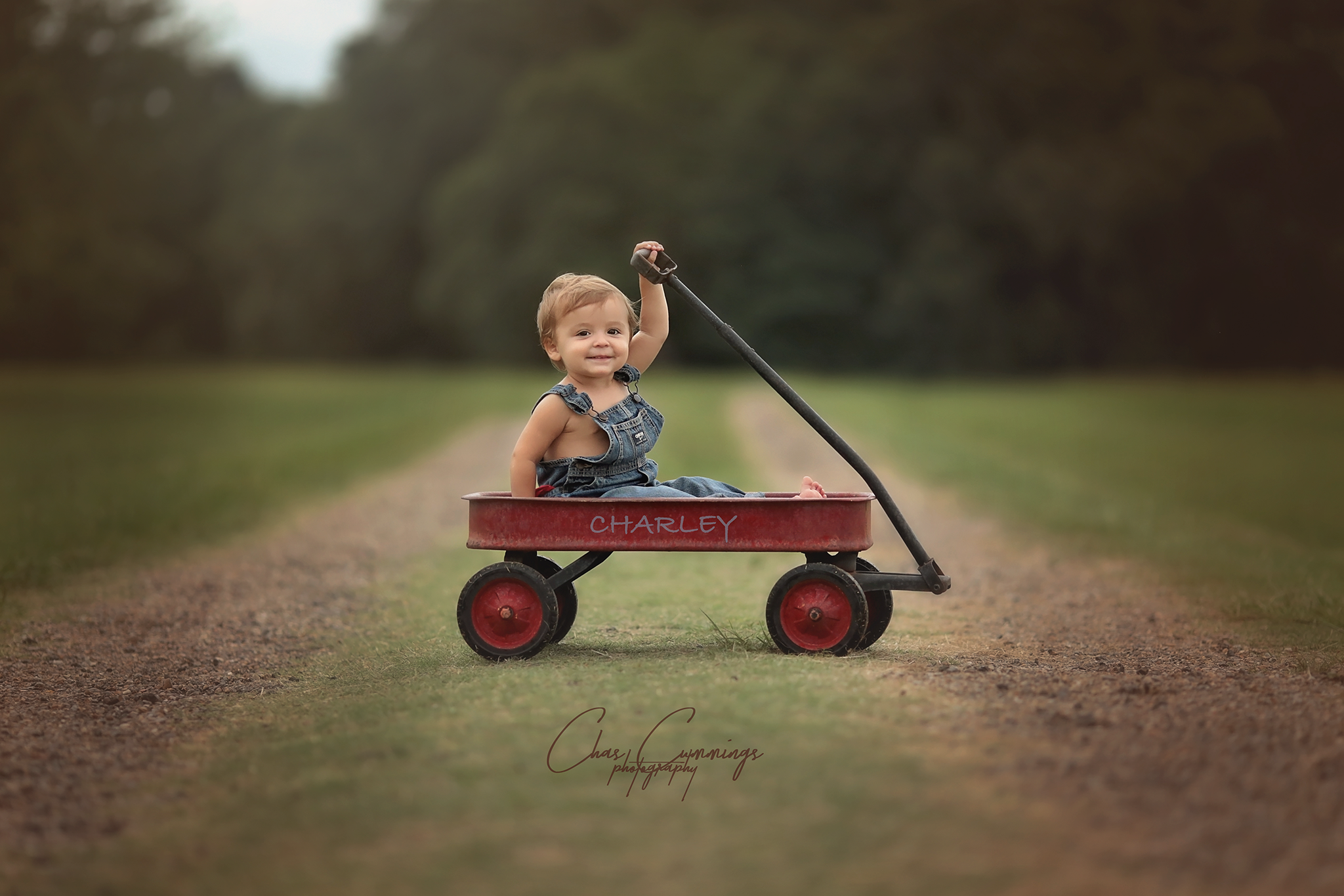 Little Red Wagon 3