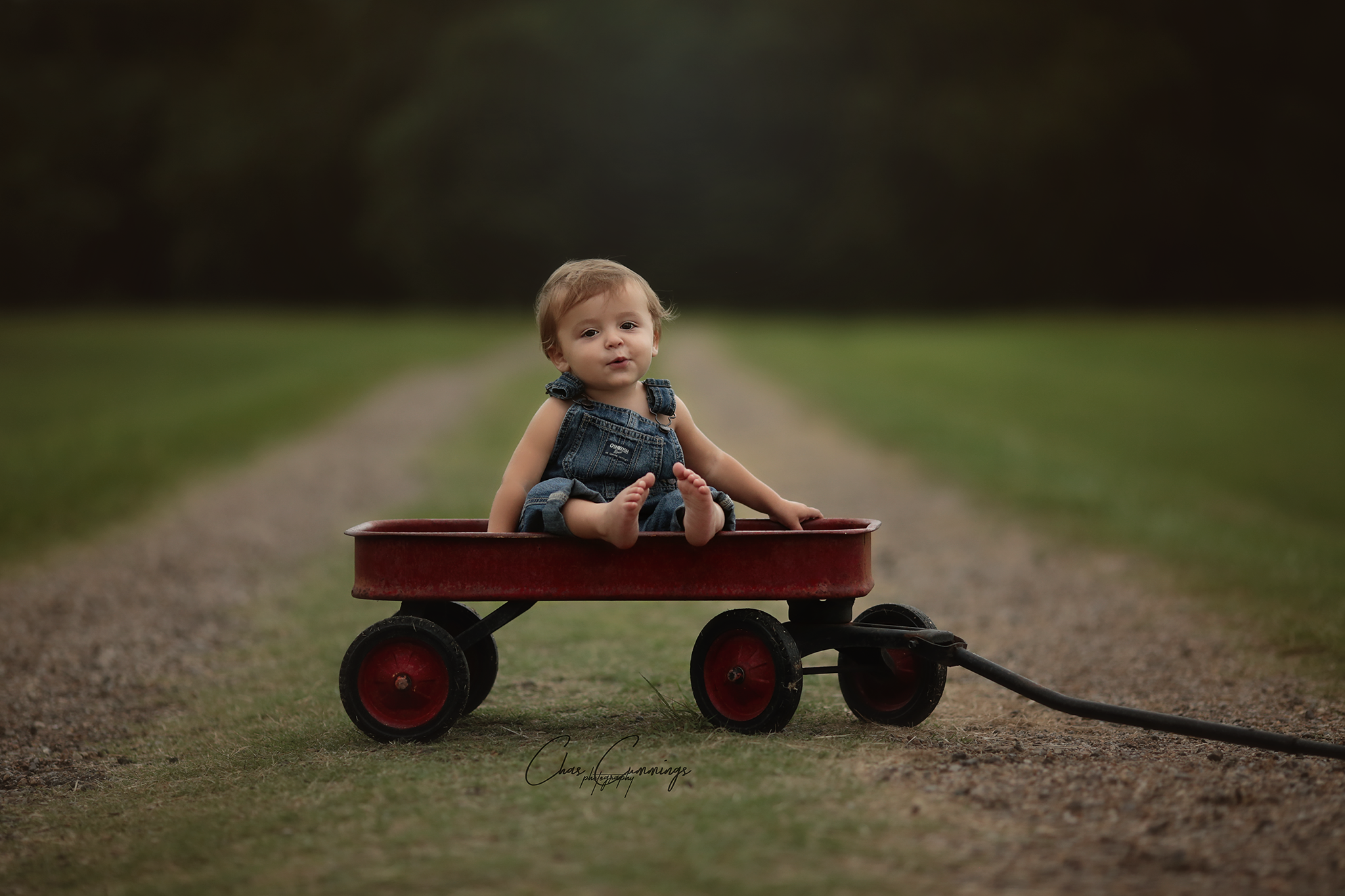 Little Red Wagon 2