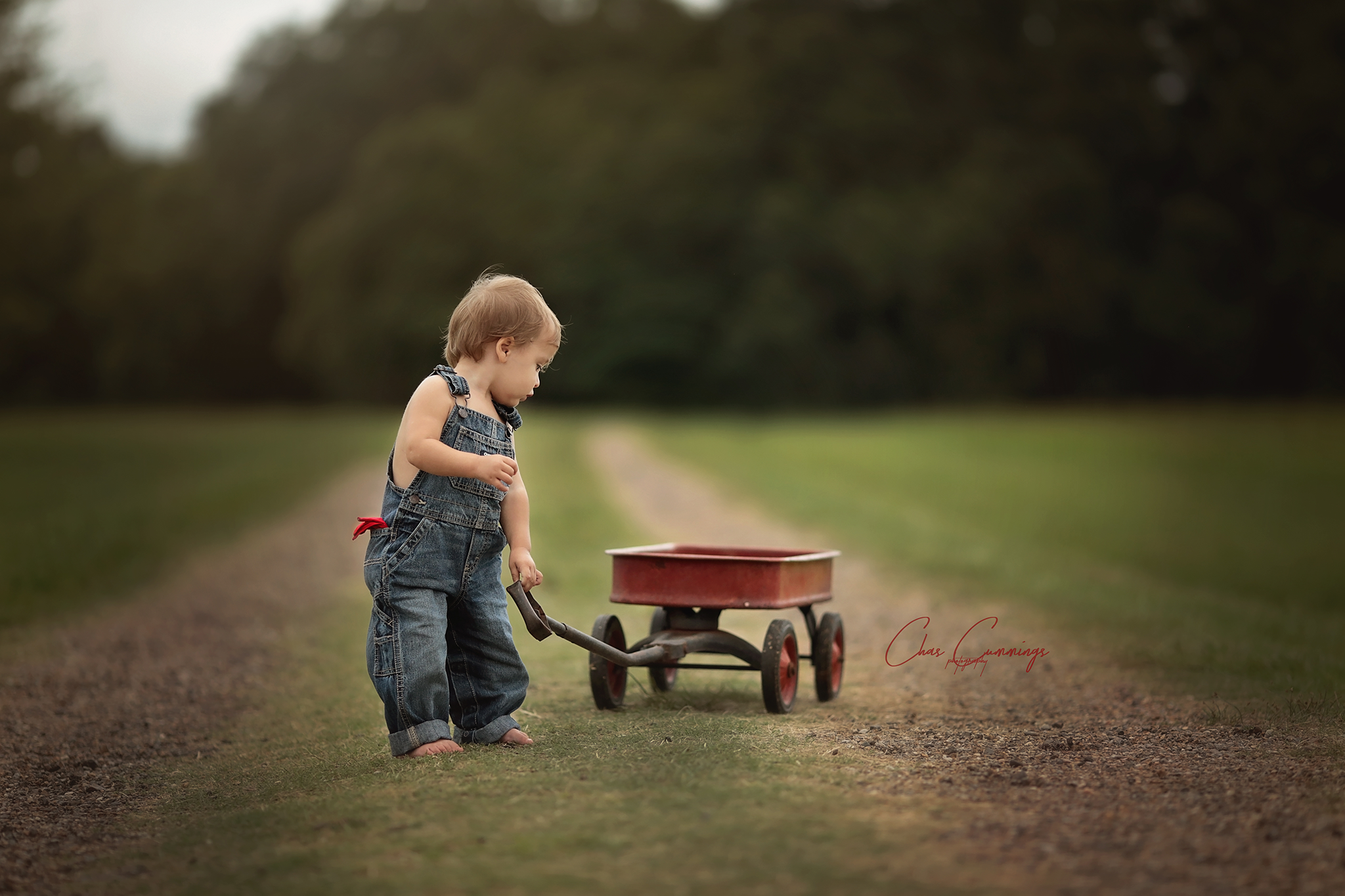Little Red Wagon 1