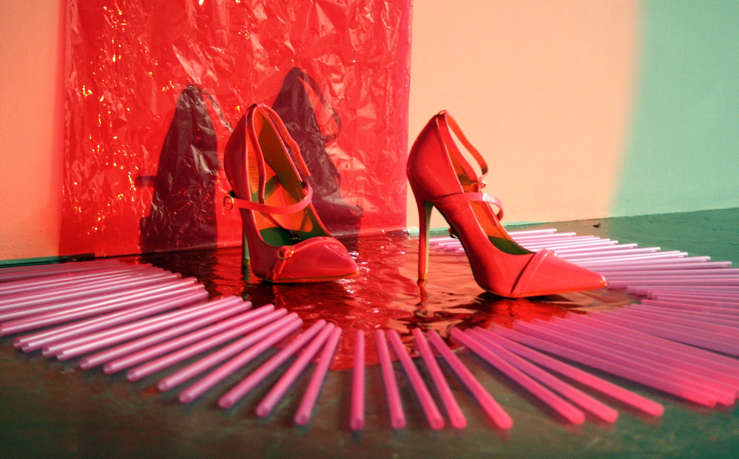 Pink Lady's shoes 2