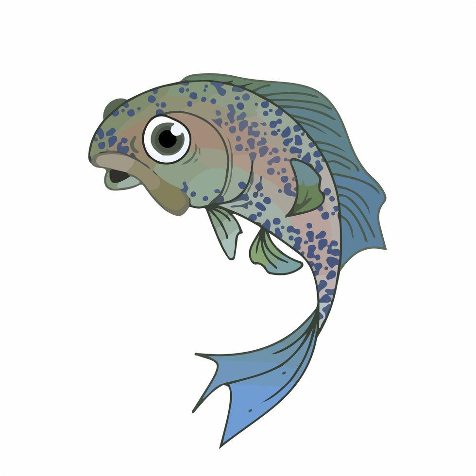 Fish Bot