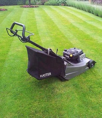 garden maintenance services surrey