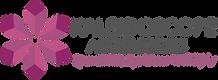 kaleidoscope_logo.png