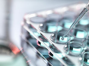 Pipetting Samples