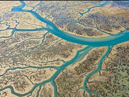 Our Resiliency Rivers