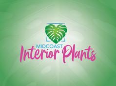 Midcoast Interior Plants32.jpg