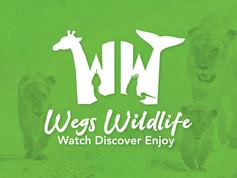 Wegs-Wildlife-WW.jpg