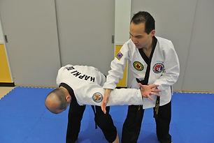 2018 Master Florian Joo Hapkido Teaching
