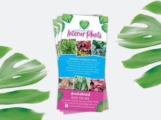 Midcoast Interior Plants