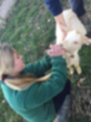 girl treating goat on smallholding course