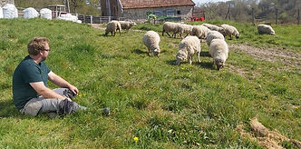 man with sheep on smallholding course