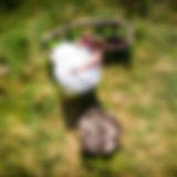 DJI_0053.jpg