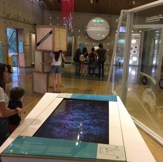 """Exposición """"Neurozona"""", MIM, 2017"""