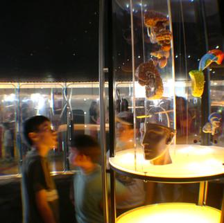 """Exposición """"Mente y cerebro"""", MIM, 2004"""