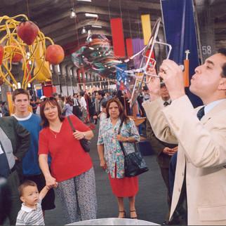 """Exposición """"El despertar de los sentidos"""", MIM, 2001"""