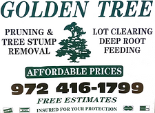 tree services highland village, tree services coppell, tree trimming highland village, tree trimming coppell, tree removal, tree trimming, stump removal, storm cleanup, golden tree, 12 tree, tree company, tree maintenance