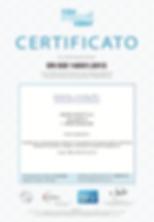 EN ISO 14001:2015