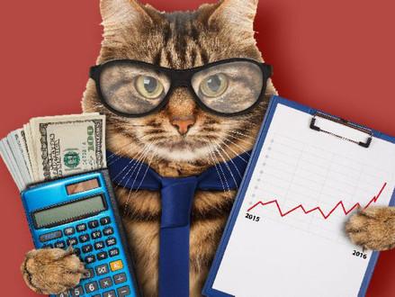 Conceitos financeiros básicos para você administrar seu Pet Shop