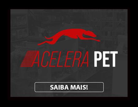 ACELERA.png