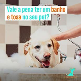 Vale a pena ter um banho e tosa no meu Pet Shop?