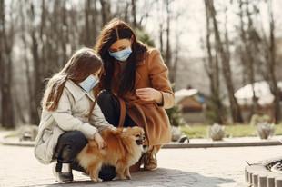 Tutores gastam 294 reais por mês com seus pets