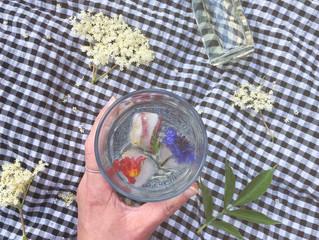 A Seasonal Recipe: Elderflower Cordial