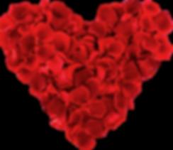 Heart shaped rose petals