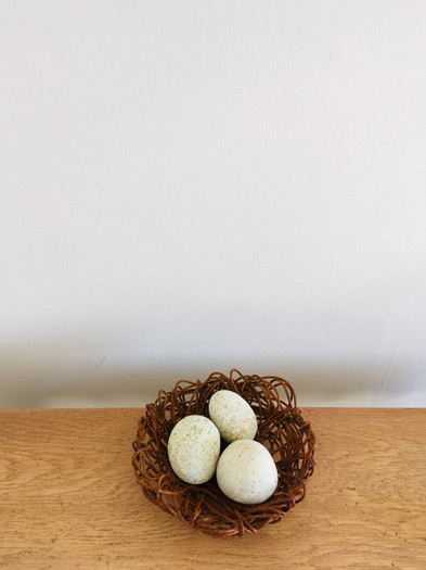 Nest Eggs - from $50