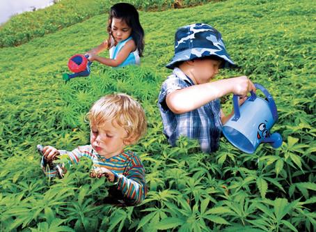 Cannabis Kids