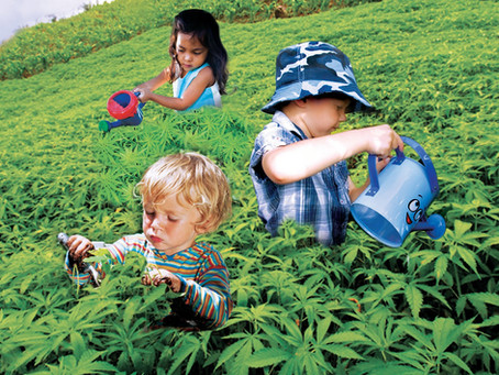 Cannabis Kids
