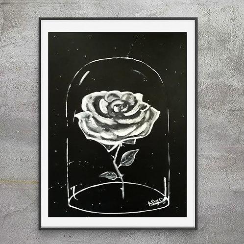 Quarantine Rose (Twilight Series)