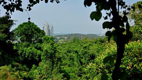 singapore_13348588815_o.jpg