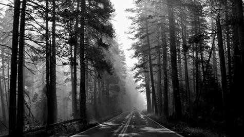wildfire-early-morning-smoke_36881234540