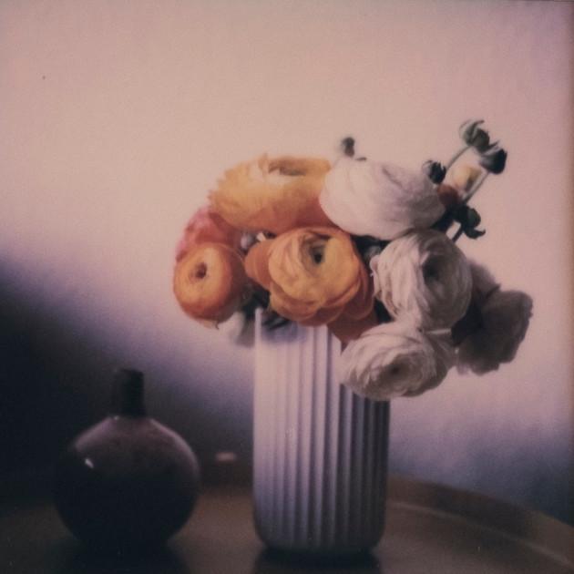 Flower Studies # 7
