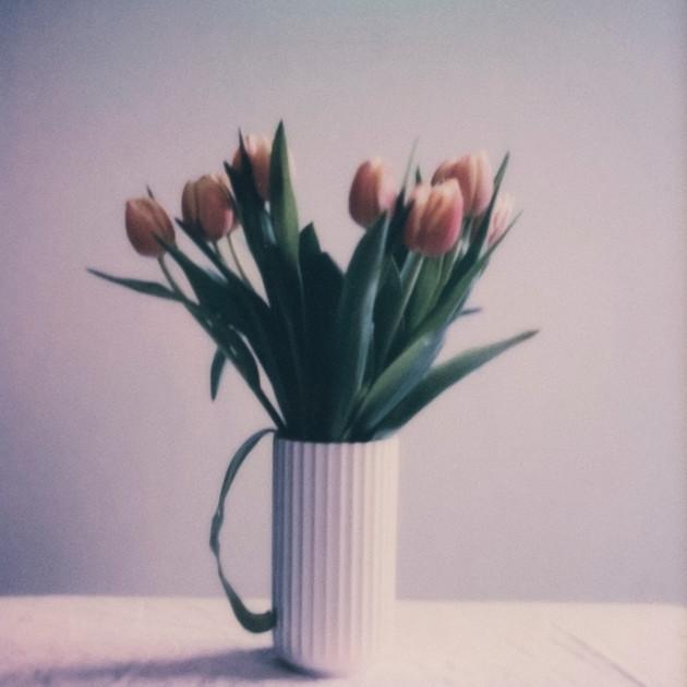Flower Studies # 4