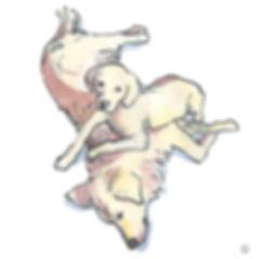 hondenduo