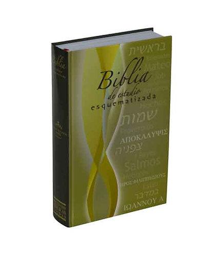 Biblia de Estudio Esquematizada 21,5x14