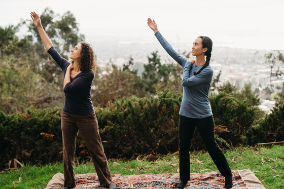 Conscious Dancer Interview with Dr Johnson