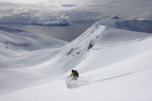ski and sail dog sledding