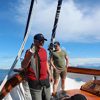 Lofoten Fishing - S/Y Stella Oceana - World Sea Explorers