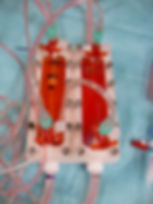 Bioreaktor.JPG