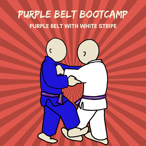 Purple Belt Bootcamp - Purple & White Stripe