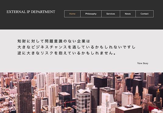 ext-ip-website-top.png