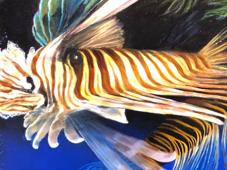 Fish and Swimming Lionfish