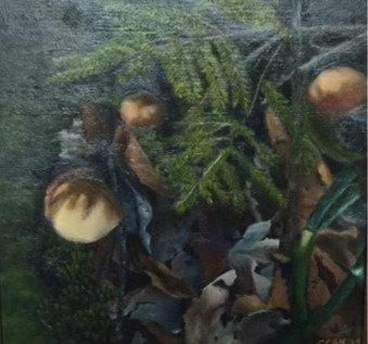 Forest Detritus