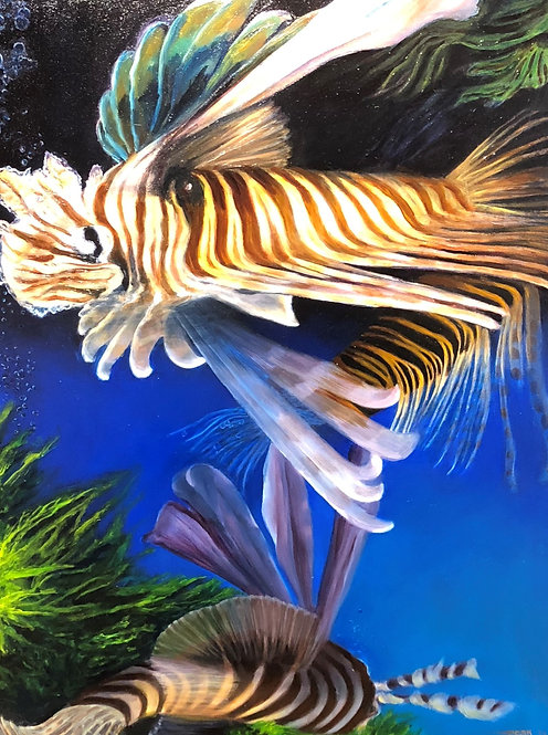 Swimming Lionfish