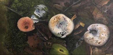 Three Mushrooms on Golden Pond