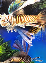 Swimming Lionfish Cropped.jpg