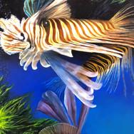 Swimming Lionfish