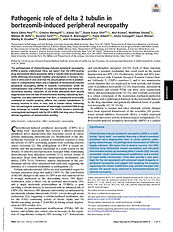 Pages from e2012685118.full.jpg